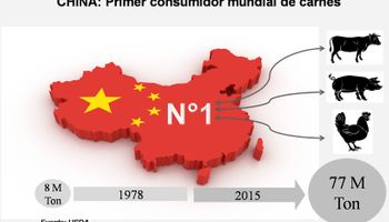 Por qué en China hay una gran oportunidad para la carne