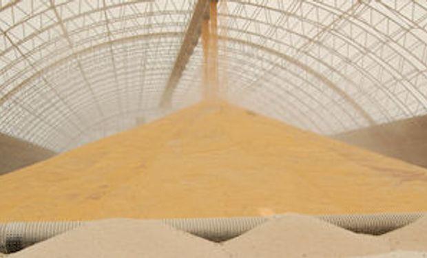 China busca mercados alternativos de maíz