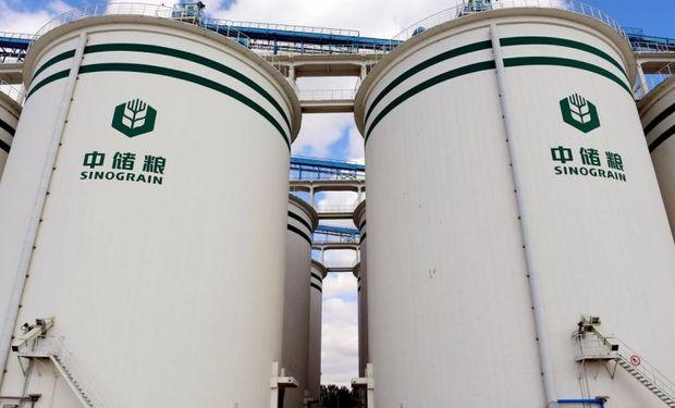 China apura compras de soja por temor al avance del coronavirus en Brasil y Estados Unidos