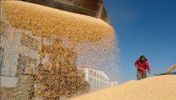 Queja por los subsidios agrícolas de China