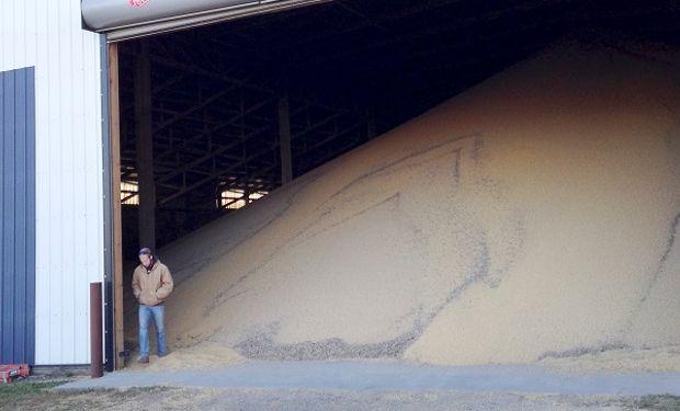 Ciberataque en plena cosecha: en Minnesota, otra empresa agrícola tuvo que dar de baja el sistema