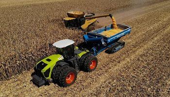 Una familia de EEUU batió dos récords Guinness en cosecha de maíz