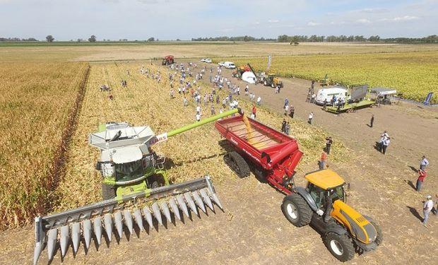Los asistentes podrán encontrar respuesta a diez grandes preguntas que surgen de cara a la nueva campaña y, al igual que los productores, la jornada pondrá su cabeza en el manejo del maíz.