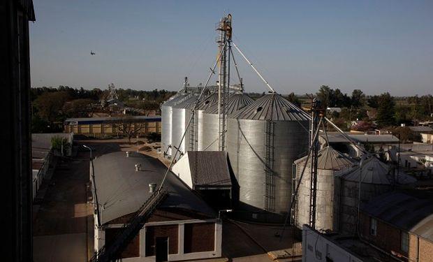 Durante marzo la exportación de harina de trigo cayó cerca de un 50% contra el año pasado, reflejando el impacto de las retenciones.