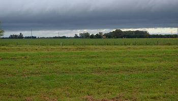 El SMN emitió un alerta por lluvias intensas y granizo para la región centro