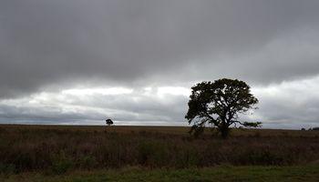 Pronóstico: escenario complicado para la cosecha en el oeste de Argentina