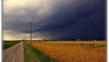 Información agroclimática: cuando el saber es poder