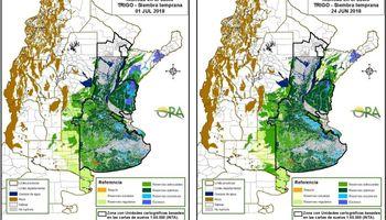 Las reservas de humedad se mantienen óptimas para el trigo