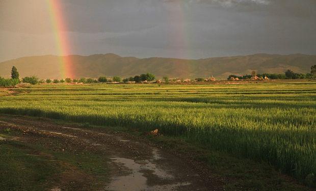 Frente Pampero trae lluvias a zona agrícola.