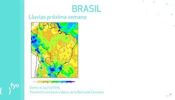 Brasil: ¿clima seco y sostén de las cotizaciones?