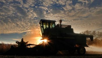 Sexta suba consecutiva para la soja, a la espera de datos del USDA