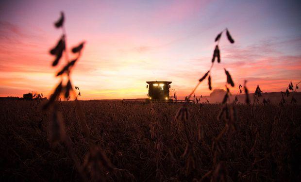 Previo al informe del USDA la soja cerró en alza.