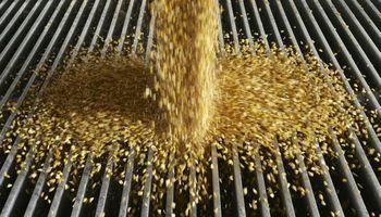 ¿Qué puede pasar con la comercialización de soja a corto plazo?