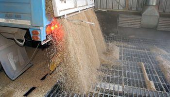 Está listo el registro para las operaciones de granos