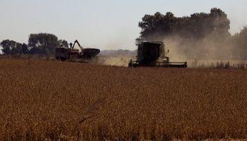 Venta de granos: difunden recomendaciones a productores para evitar descuentos de exportadores