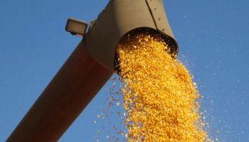 Fuertes bajas: mínimos de 12 años para los commodities