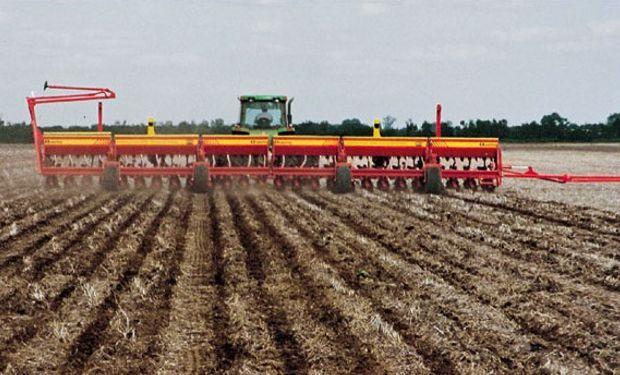 Salvo el trigo, que este año tuvo una recuperación de superficie, y la soja, que volvió a aumentar el área, el resto de los cultivos redujo la siembra.