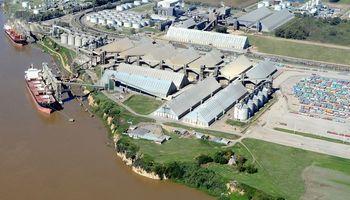 Por el cepo, las exportaciones de granos cayeron 47%