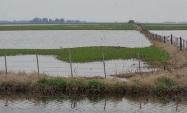 Informe de Inundaciones de la Bolsa de Cereales y Productos de Bahía Blanca.