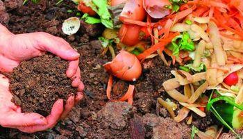 Huerta: cómo hacer compost en casa