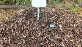 El INTA lanza una encuesta sobre residuos orgánicos