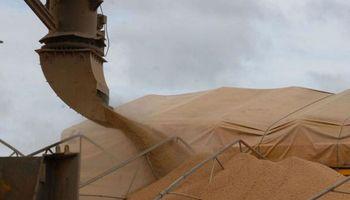 Para China la Argentina sigue siendo una factoría de soja