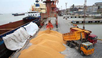 Se disparan las compras de soja, trigo y maíz de China, pero persiste el temor por brotes de peste porcina africana