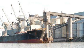 Exportación compró 202,81% más de trigo que el año pasado