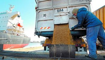Fuertes compras de trigo y maíz por parte de exportadores