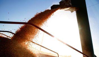 Destacan sistema que reduce la incertidumbre cambiaria en la compraventa de granos