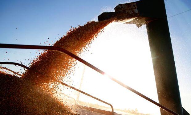 Agricultura y AFIP implementan sistema de liquidación de divisas en operaciones de compraventa de granos.