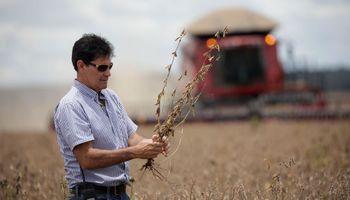 Asociaciones Rurales del Mercosur critican la decisión del Gobierno argentino
