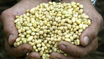 """""""Pará la mano"""": el pedido de CRA a Monsanto"""