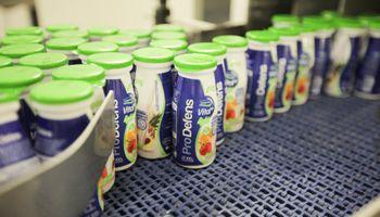 En Uruguay mejora el mercado lácteo, pero siguen los precios deprimidos