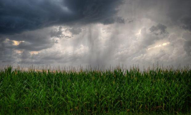 """""""El Niño ubican su intensidad entre las más fuertes que hemos conocido"""", manifestó Aiello."""