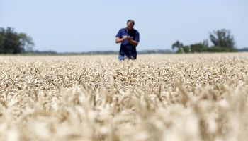 Índice elaborado por el INTA refleja el optimismo de los productores