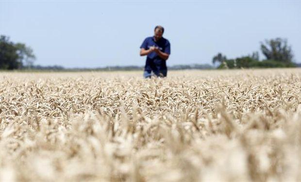 Un índice elaborado por el INTA refleja el optimismo de los productores por la marcha de la economía.