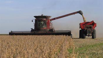 Monsanto: está empantanada una posible solución al conflicto