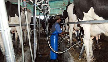 Sector lechero santafesino: hay un plan