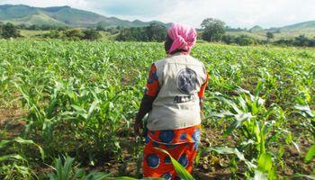 Con maquinaria agrícola y conocimiento, Argentina ayudará al Congo a lograr el autoabastecimiento de alimentos