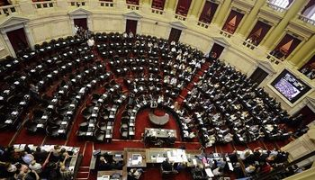 Con el resultado de las PASO, ¿cómo quedaría representado el campo en el Congreso?