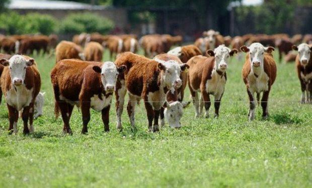 Organizado por la Sociedad Rural de Rosario y con la gran participación de su Ateneo de Jóvenes.
