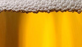 Consumo de cerveza contribuye a aumentar la siembra de cebada