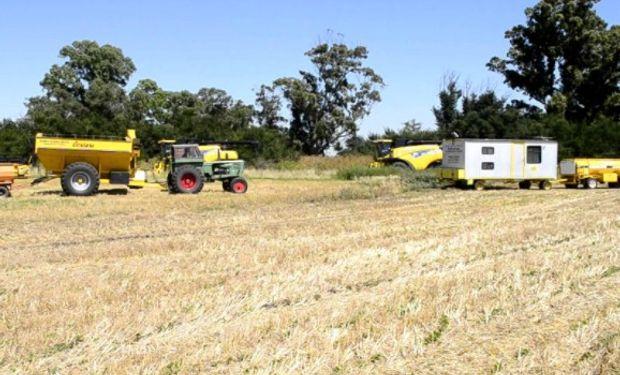 Contratistas rurales trabajan 80% del área sembrada y cosechada.