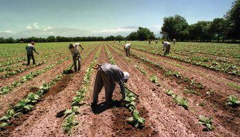 ¿En qué consiste la contratación temporaria en la actividad agraria?