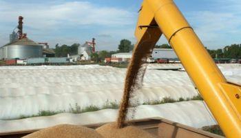 Importante carga administrativa para el agro: regímenes de información indirectos de la AFIP