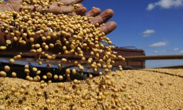 La CNV deja de controlar la operatoria de granos.