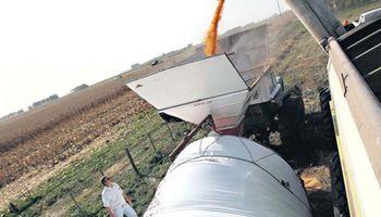 Afip: controlan la cosecha, pero con buen trato