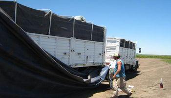 Operativos de control en camiones