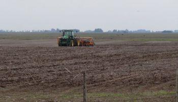 Control de malezas de cara a la siembra de soja